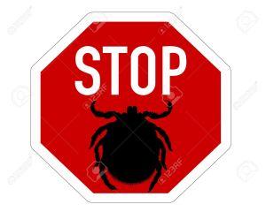 stop ácaros