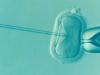 ¿Sabías que la ovodonación reduce un 85% la tasa deaborto?