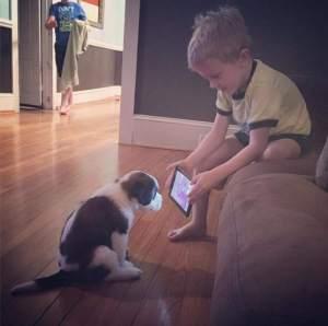 dog-kid